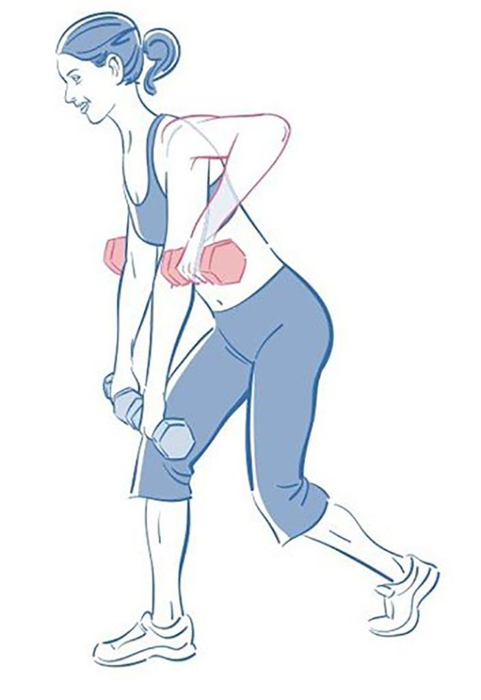 Exercices Pour Renforcer Le Dos Serrement Omoplates