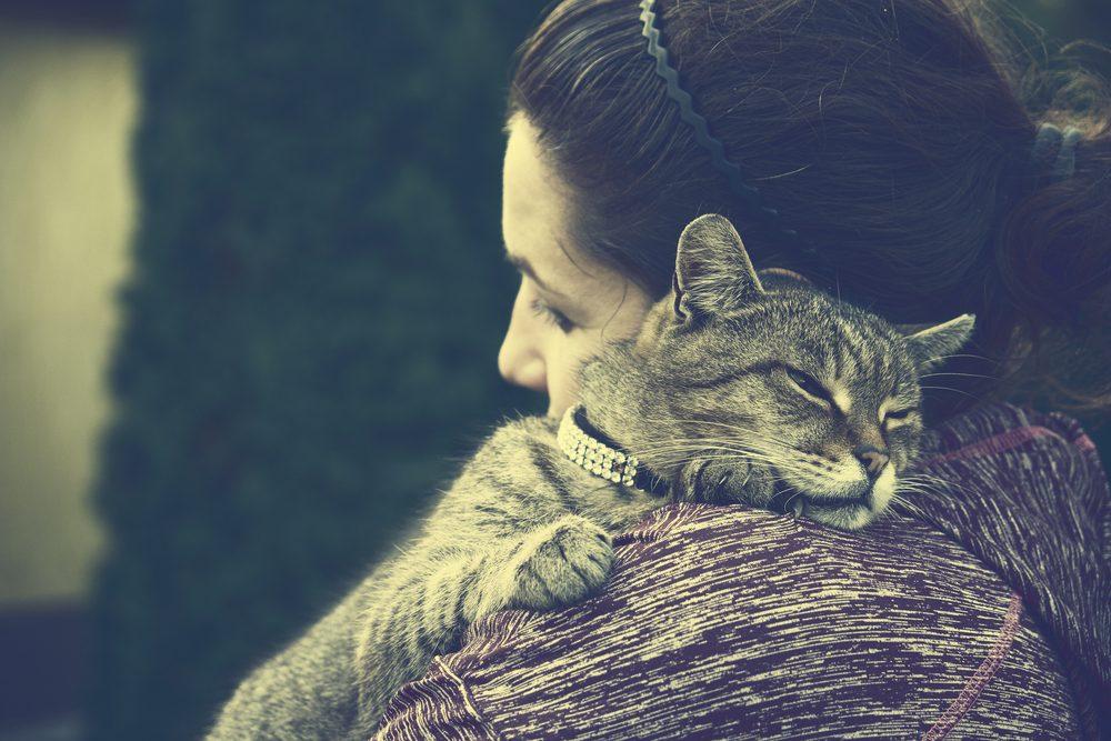 Comment faire le deuil de son animal de compagnie décédé?