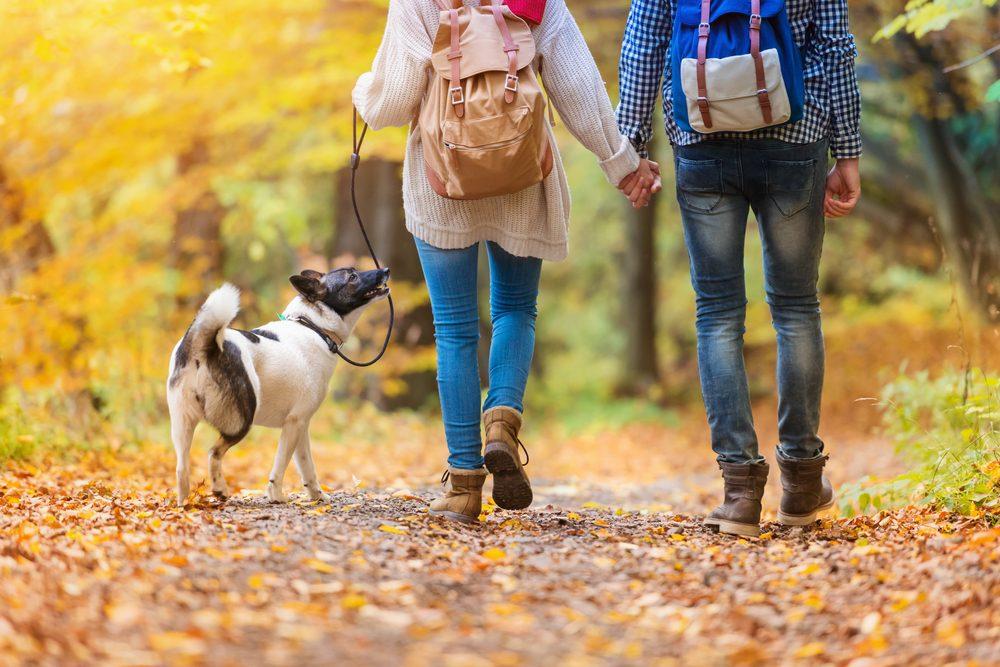 Maigrir: brûlez plus de calories en marchant avec ces trucs efficaces!