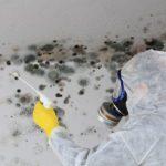 Comment enlever la moisissure dans votre maison