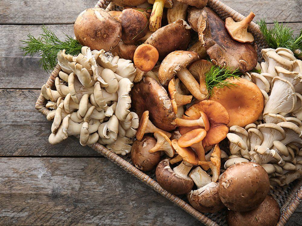Les champignons combattent les maladies.