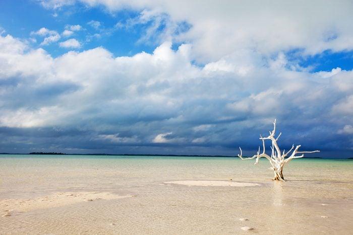 Plage à couper le souffle au Bahamas.