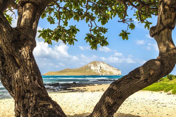 Une autre belle plage d'Hawaii.