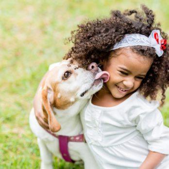 Comment protéger votre enfant des morsures de chiens?