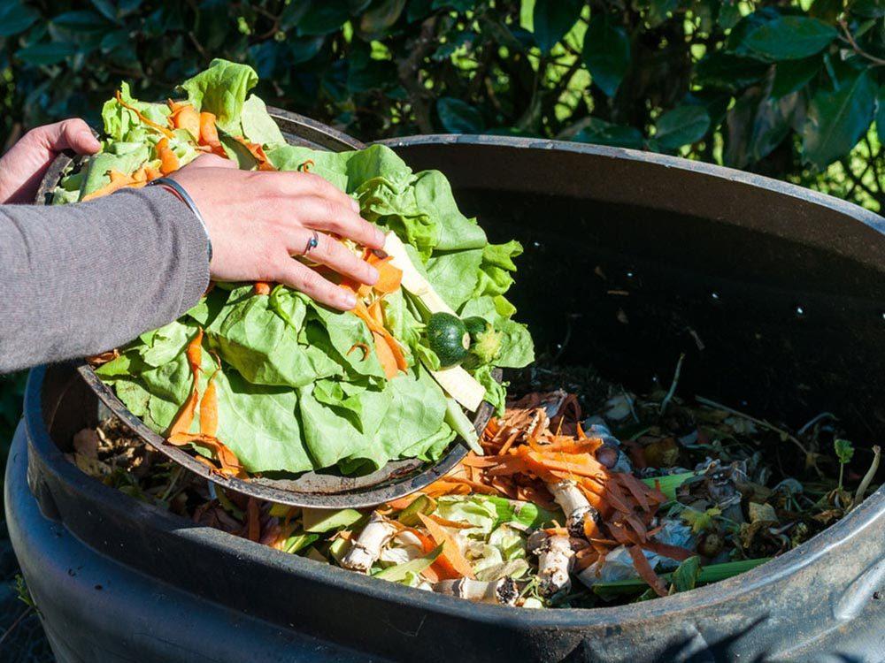 Pour des repas santé en famille, commencer à composter.