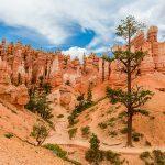 États-Unis: 6 randonnées spectaculaires