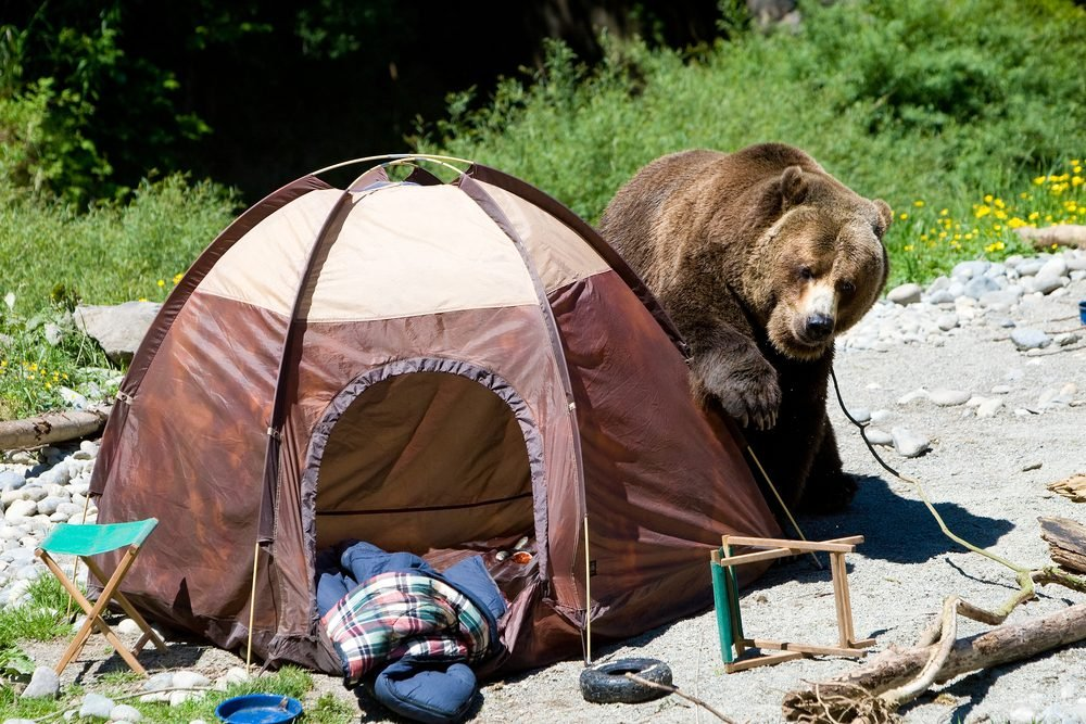 Ne négligez jamais l'emplacement en camping.