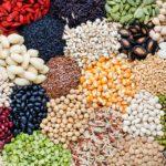 6 graines saines à consommer chaque jour