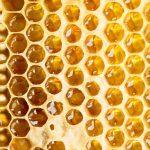 Miel: 8 puissants bienfaits et vertus santé