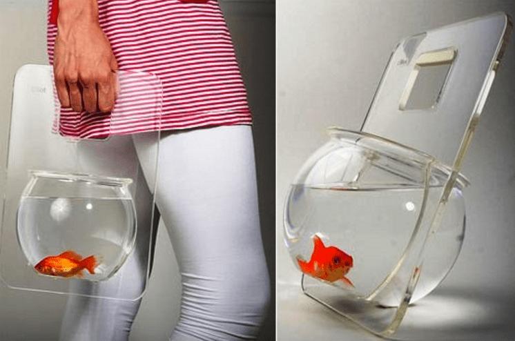 Un aquarium portable parmi les objets les plus inusités pour vos animaux.