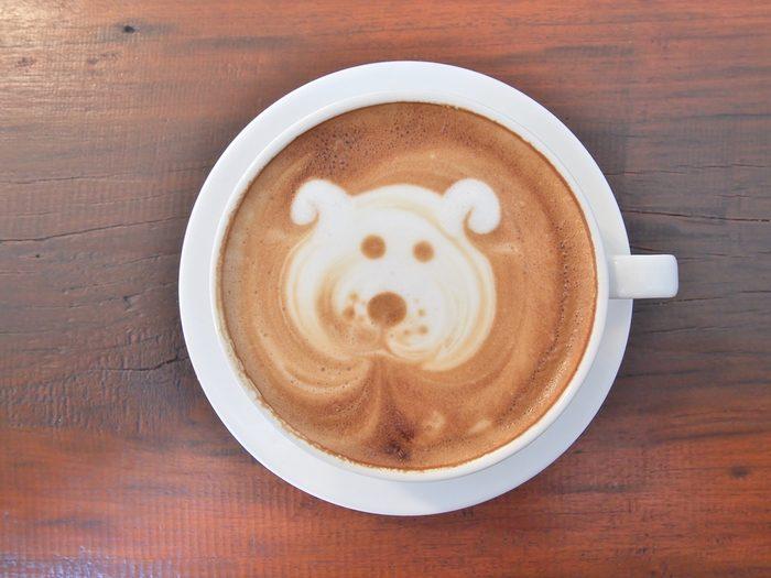Du café pour chiens.