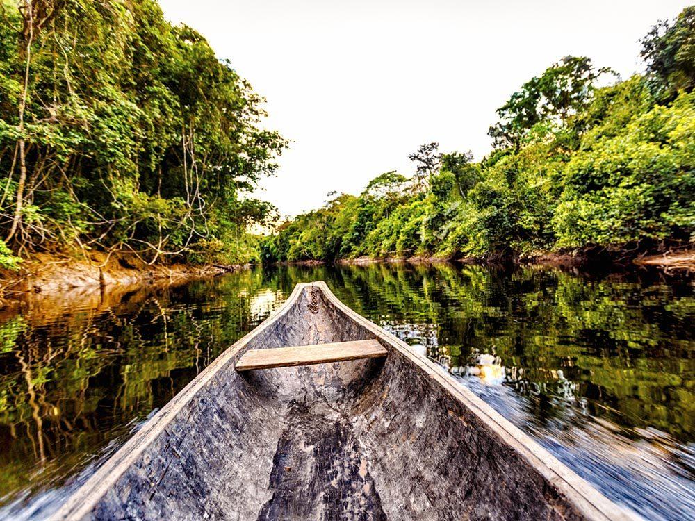 L'Amazonie, une destination incontournable, est en train de disparaitre.