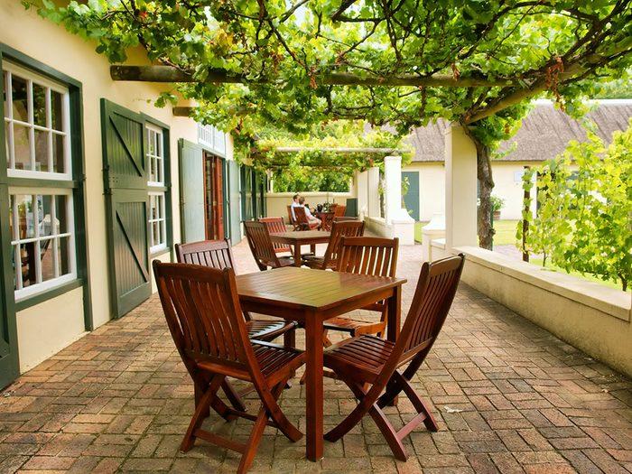 Planter des vignes pour garder la maison fraiche.