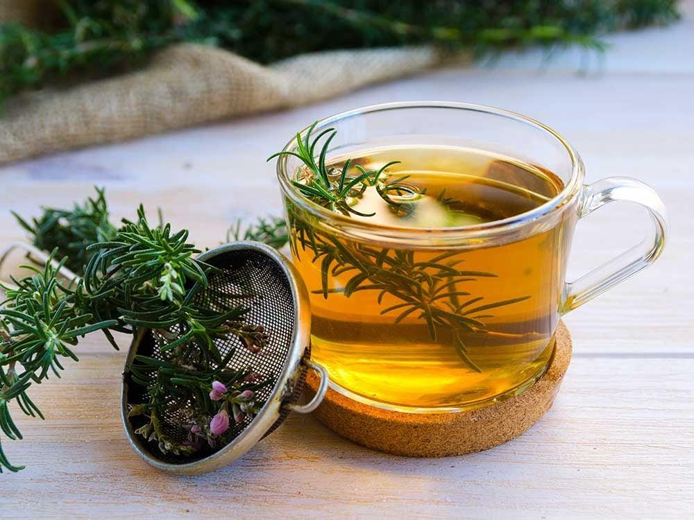 Thé et infusion : le romarin.