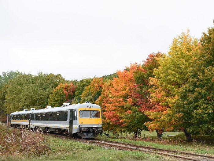 Train régional de Charlevoix en automne.