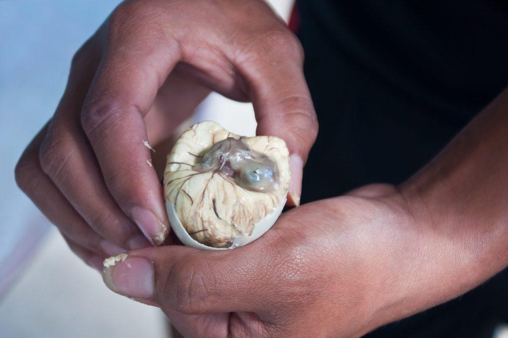 Un aliment des plus étranges, le balut