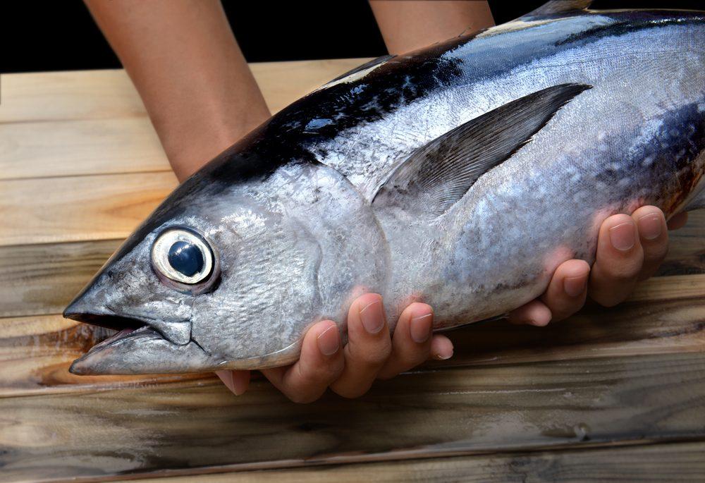 Un des aliments les plus étranges, l'oeil de thon