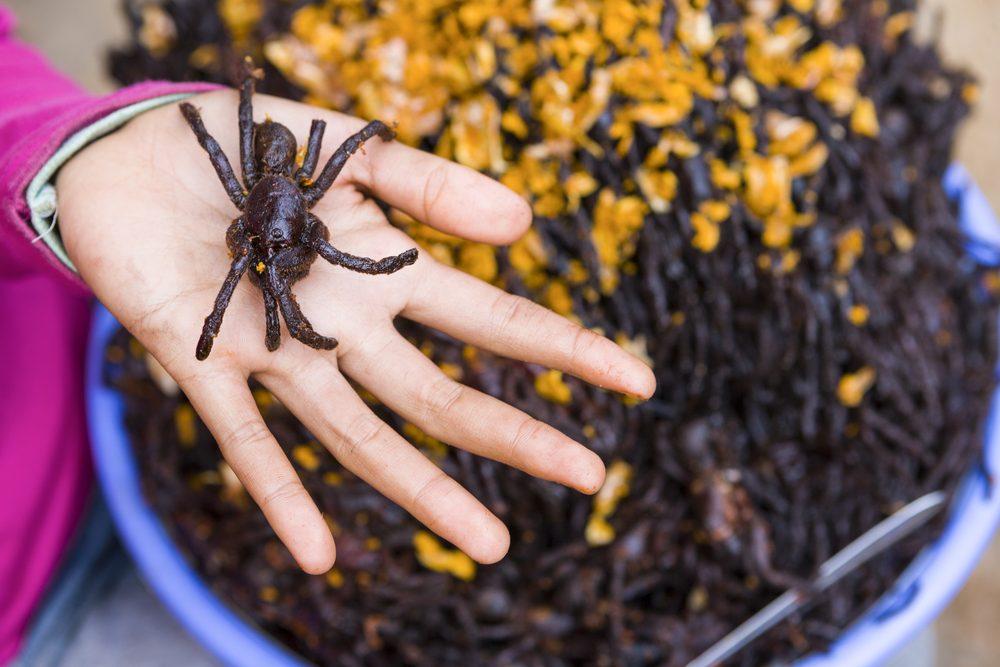 Les aliments les plus étranges du globe, l'araignée frite