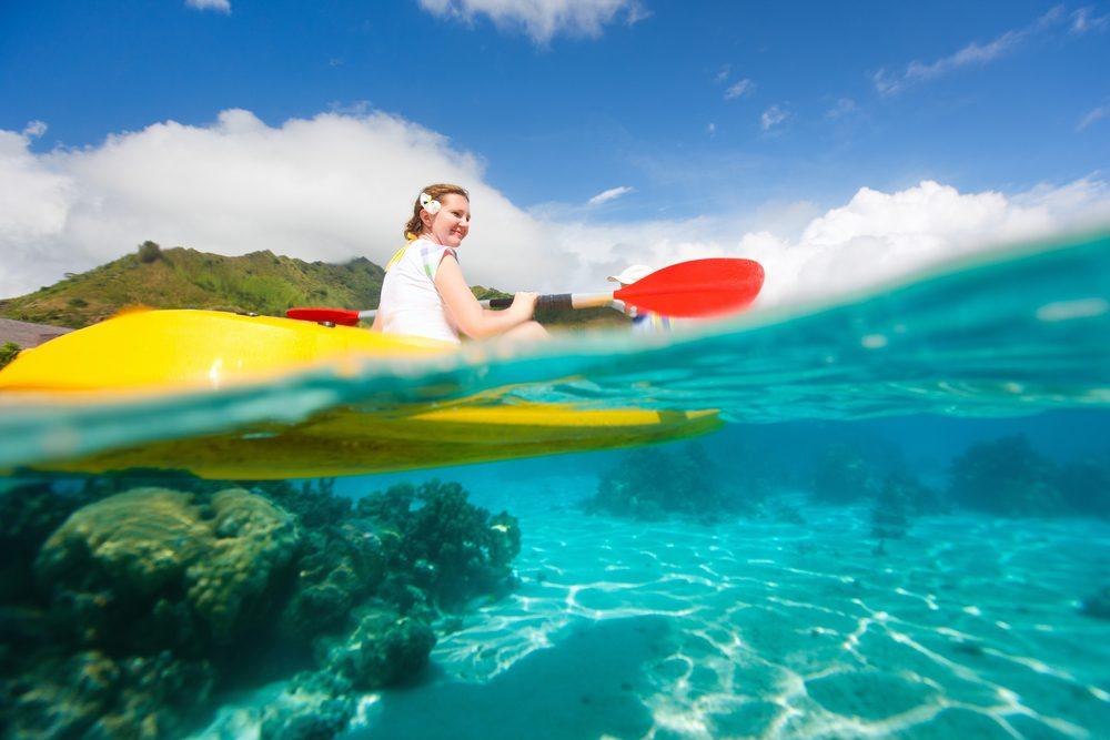 Cet hôtel offre le service étonnant d'un biologiste de la vie marine