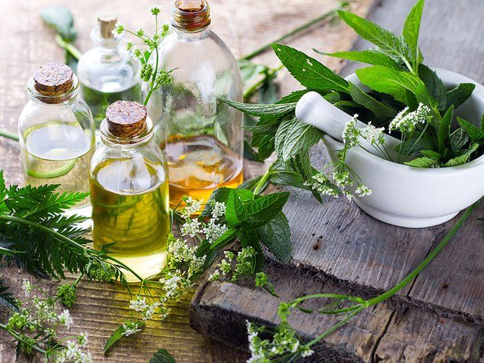 La médecine naturelle pour augmenter votre niveau d'énergie en hiver.