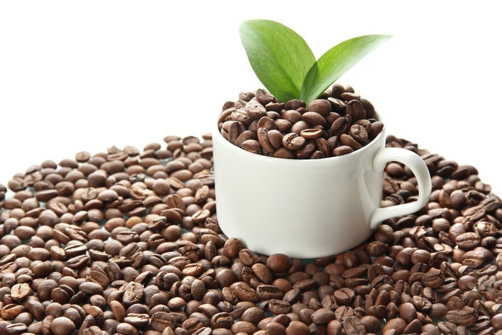 Le café élève-t-il les taux de cholestérol?
