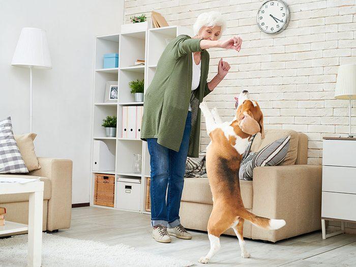 Augmentez votre espérance de vie en adoptant un animal.