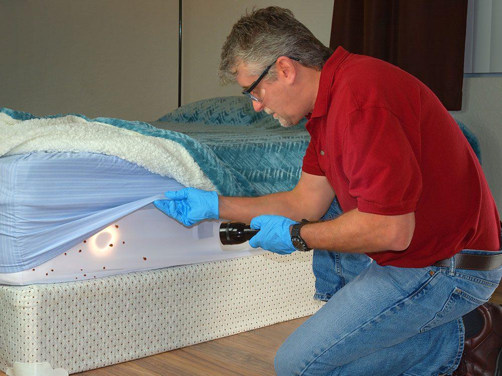 Faites attention si des personnes de votre entourage ont eu des punaises de lit.