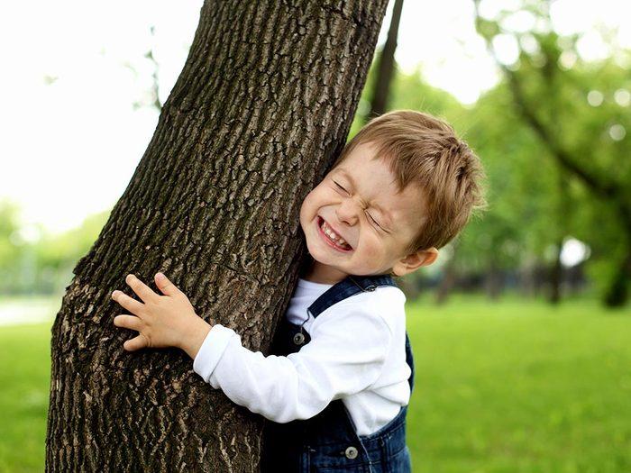 Stimuler la santé et guérir grâce aux arbres.