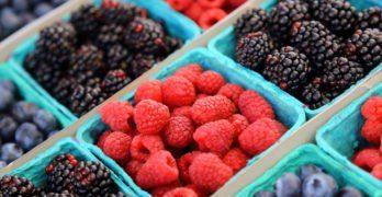10 aliments faibles en calories et absolument savoureux
