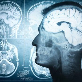 7 conseils pour muscler son cerveau