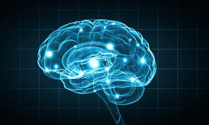 Le stress réduit la matière grise du cerveau