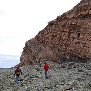 Les falaises fossilifères de Joggins en Nouvelle-Écosse: un site touristique à couper le souffle!