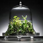 4 projets de jardinage rapides à faire le week-end