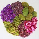 5 façons géniales de préserver un bouquet de fleurs