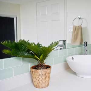 3.Pensez à la salle de bain!
