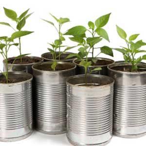 3. Utilisez des boîtes de conserve