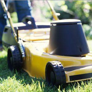 2. Tondre la pelouse