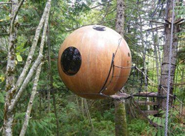 2. Tree Spheres