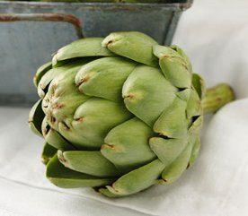 Aliments danger: plantes de la famille du tournesol