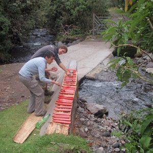 6. Le projet de services bénévoles du Cotopaxi, Quito, Équateur