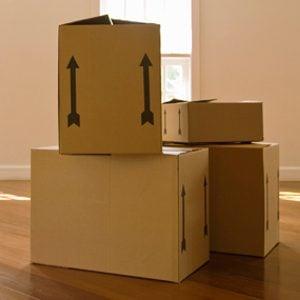 Réparez le toit avec une boîte de carton