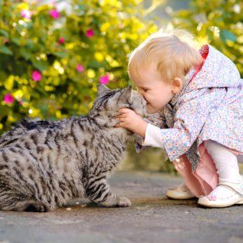 6 raisons d'avoir des animaux pour vos enfants