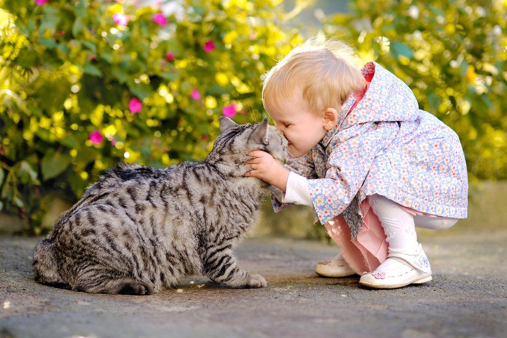 1-_animaux_enfants_chat_chien_0
