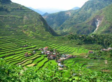 9. Les rizières en terrasses d'Ifugao, Philippines