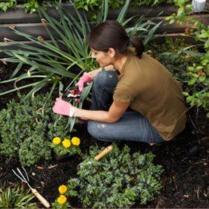 3. N'encombrez pas chaque centimètre carré de plantes ou de fleurs.
