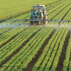 L'agriculture «traditionnelle» n'est pas viable