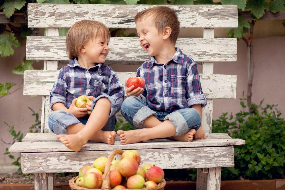 2. Une pomme par jour éloigne le médecin pour toujours.