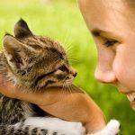 5 conseils pour bien choisir son animal de compagnie