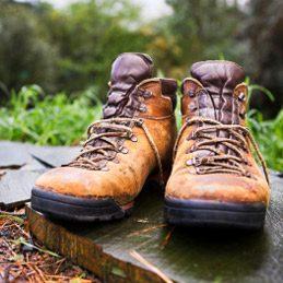 2. Faire sécher des chaussures