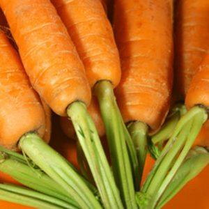 Asperges, haricots et carottes